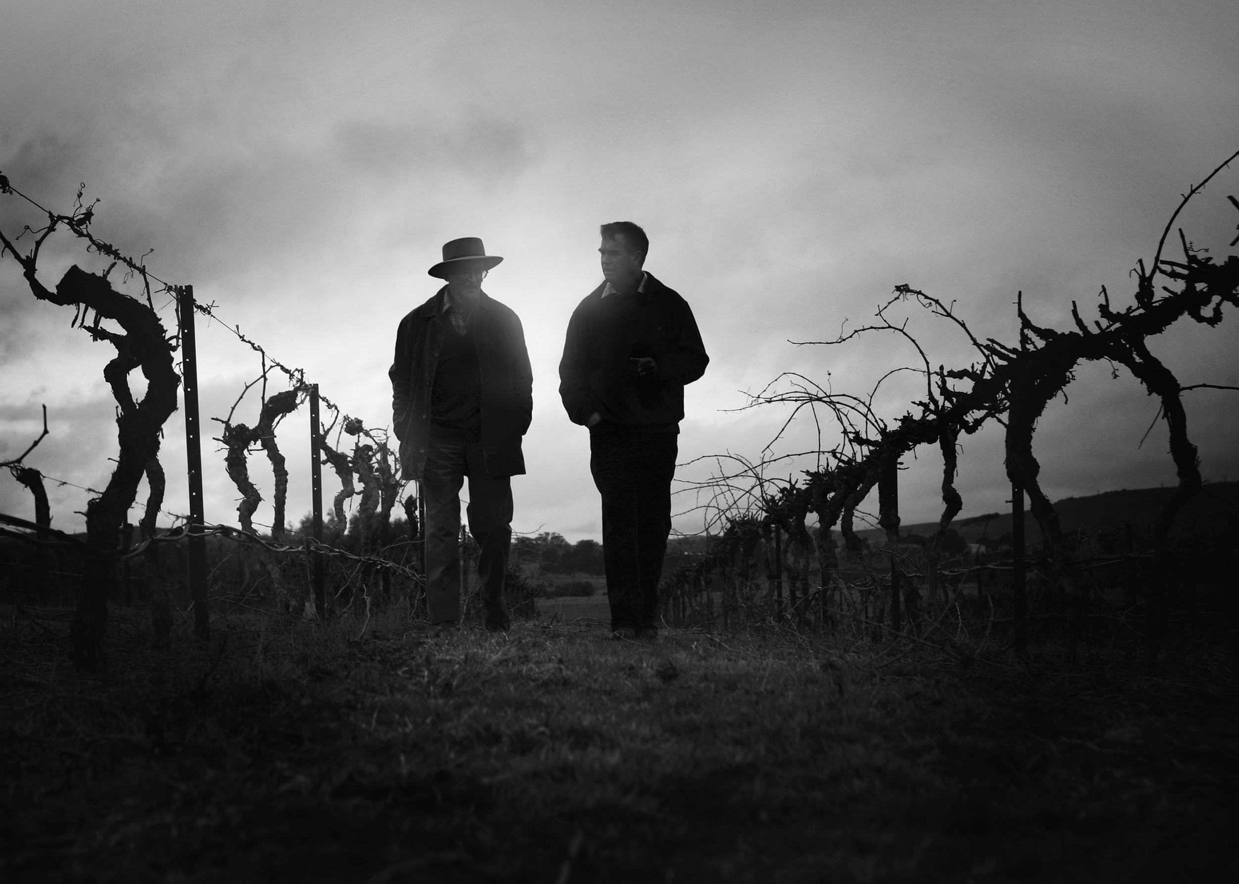 Canberra wine tours